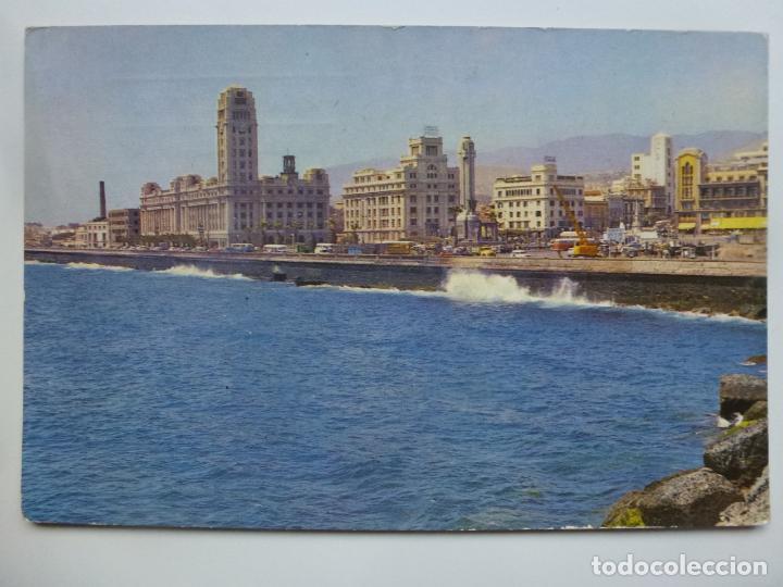 POSTAL. 242. SANTA CRUZ DE TENERIFE. AVENIDA DE JOSÉ ANTONIO. ED. CANARIA. CIRCULADA EN 1963. (Postales - España - Canarias Moderna (desde 1940))