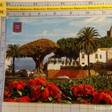 Postais: POSTAL DE TENERIFE. AÑO 1982. ICOD DE LOS VINOS, DRAGO MILENARIO. 1560. Lote 141259830