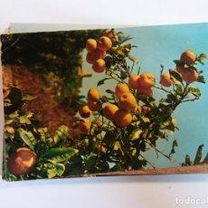 Postales: BJS.NARANJAS.CANARIAS.CIRCULADA.RO FOTO.N 526.. Lote 141277514