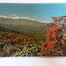 Postales: BJS.VALLE DE LA OROTAVA.CANARIAS.CIRCULADA.EDT ARRIBAS.N 2360.. Lote 141283274