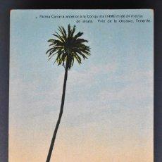 Postales: POSTAL ANTIGUA TENERIFE, PALMA ANTERIOR A 1496- 24 METROS DE ALTURA. LA OROTAVA.V.CARTAYA Nº12 NC. Lote 141428558