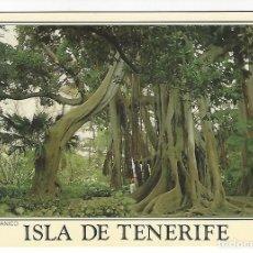 Postales: ISLA DE TENERIFE .- JARDIN BOTANICO. Lote 143050402