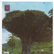 Postales: 147 - ICOD DE LOS VINOS (TENERIFE). DRAGO MILENARIO. VISTA GENERAL.. Lote 143051050