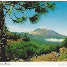 Postales: TF-0004 - TENERIFE.- PICO DEL TEIDE DESDE EL MONTE DE LA ESPERANZA. Lote 143051614