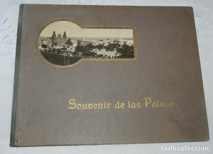 ALBUM DE FOTOGRAFIAS SOUVENIR DE LAS PALMAS, ISLAS CANARIAS, 26 PAG. MIDE 28 X 21,5 CMS. (Postales - España - Canarias Antigua (hasta 1939))