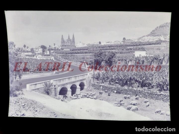Postales: 15 CLICHES ORIGINALES - ARUCAS, LAS PALMAS - NEGATIVOS EN CRISTAL Y CELULOIDE - EDICIONES ARRIBAS - Foto 11 - 145620406