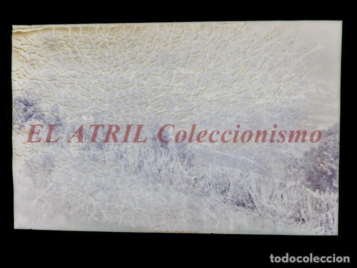 Postales: 15 CLICHES ORIGINALES - ARUCAS, LAS PALMAS - NEGATIVOS EN CRISTAL Y CELULOIDE - EDICIONES ARRIBAS - Foto 25 - 145620406