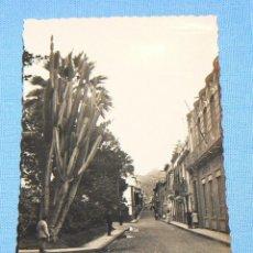 Postales: POSTAL DE SANTA CRUZ DE TENERIFE CALLE SAN FRANCISCO ED. ARRIBAS Nº 28. Lote 146130642