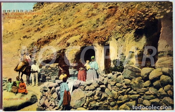 Postales: 7 POSTALES ANTIGUAS DE LAS PALMAS. EDITOR: J. PERESTRELLO, PHOTO. NUMERADAS. NUEVAS. SIN USO. - Foto 3 - 146293026