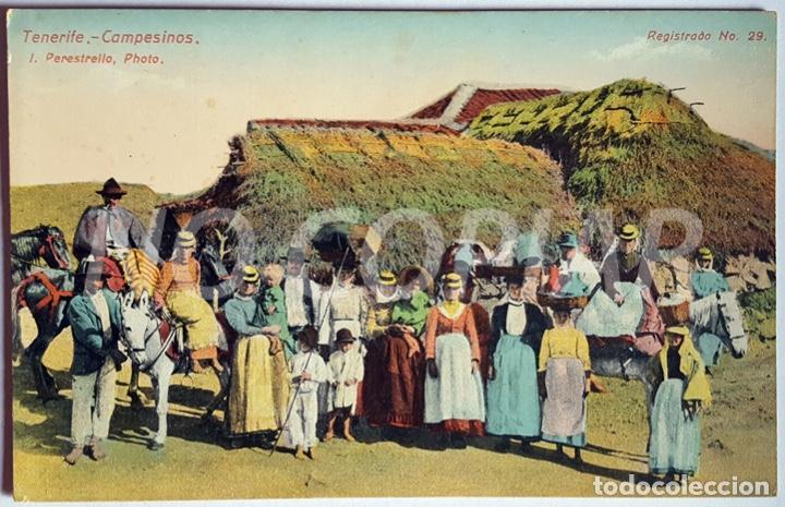 12 POSTALES ANTIGUAS DE TENERIFE. VARIOS EDITORES. NUEVAS. SIN USO. (Postales - España - Canarias Antigua (hasta 1939))