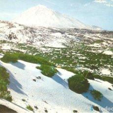Postcards - TENERIFE, TEIDE NEVADO, EDICIONES GASTEIZ,, SIN CIRCULAR - 146714238