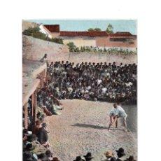 Cartes Postales: TENERIFE.(CANARIAS).- LUCHADAS. Lote 147315462