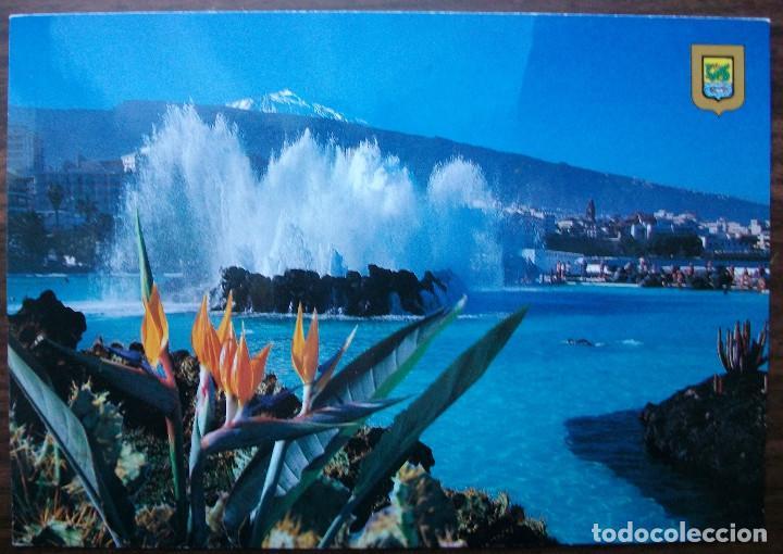 FOTO POSTAL Nº 439 PUERTO DE LA CRUZ (TENERIFE) SIN CIRCULAR (Postales - España - Canarias Moderna (desde 1940))
