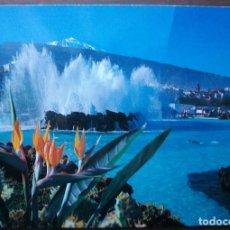 Postales: FOTO POSTAL Nº 439 PUERTO DE LA CRUZ (TENERIFE) SIN CIRCULAR. Lote 149385058