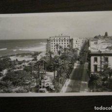 Postales: LAS PALMAS DE GRAN CANARIA-PARQUE SAN TELMO-207-ED·LUJO-POSTAL ANTIGUA-(57.016). Lote 151019318