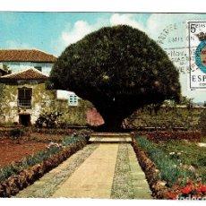Postales: DRAGO DEL SEMINARIO DE LA LAGUNA 2192 LA LAGUNA TENERIFE- SELLO 1º DIA EMISION 8-11-1965 5 PESETAS. Lote 151263830