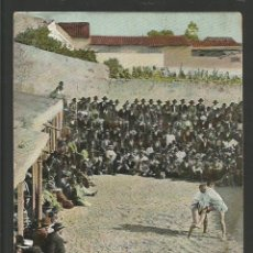 Postales: FIESTAS CANARIAS-LUCHADAS-REVERSO SIN DIVIDIR-POSTAL ANTIGUA-(57.142). Lote 151446962