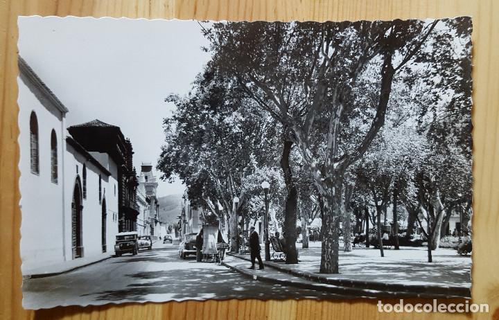 LA LAGUNA TENERIFE Nº 219 NAVA GRIMON Y PLAZA DEL ADELANTADO (Postales - España - Canarias Moderna (desde 1940))