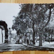 Postales: LA LAGUNA TENERIFE Nº 219 NAVA GRIMON Y PLAZA DEL ADELANTADO. Lote 152064898