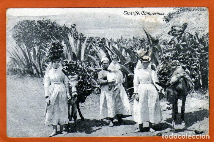 BONITA POSTAL DE TENERIFE DE UNAS CAMPESINAS MUY RARA ÚNICA PIEZA AÑOS 19?? (Postales - España - Canarias Antigua (hasta 1939))