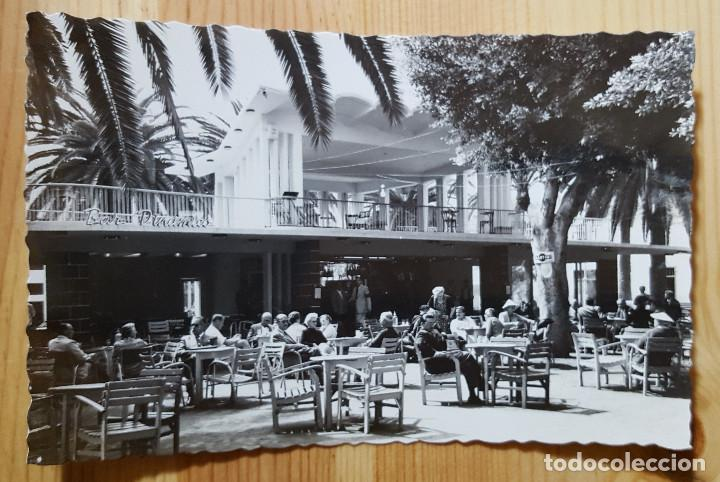 PUERTO DE LA CRUZ TENERIFE BAR DINAMICO ED. ARRIBAS Nº 228 (Postales - España - Canarias Moderna (desde 1940))