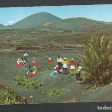 Postales: POSTAL SIN CIRCULAR - LANZAROTE 20086 - ESCENA TIPICA - EDITA COLECCION LAS AFORTUNADAS. Lote 159283794