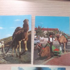 Postales: TENERIFE. Lote 159610085