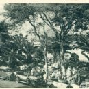 Postales: TENERIFE ALAMEDA DUQUE SANTA ELENA. HACIA 1930.. Lote 165376178