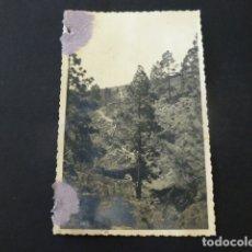 Postales: TENERIFE AGUAS DEL SUR CANAL CONDUCCION ENTRE FASNIA Y ARONA POSTAL FOTOGRAFICA 1943. Lote 165768818