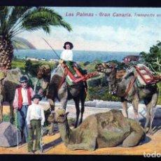Postales: LAS PALMAS DE GRAN CANARIA PRECIOSA POSTAL DEL TRANSPORTE TÍPICO DE LA ISLA EN CAMELLOS 1906. Lote 169829732