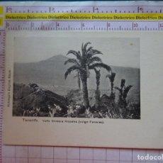 Postais: POSTAL DE TENERIFE. SIGLO XIX - 1905. VALLE OROTAVA NOPALES VULGO FUNERAS ENGLISH BAZAR. 2375. Lote 170370948