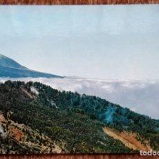 Postales: TENERIFE - MONTE DE LA ESPERANZA Y TEIDE. Lote 171086830