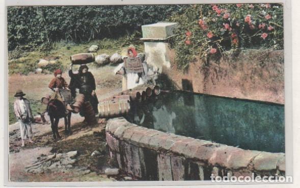 FUENTE DE TACORONTE. ED WILDPRET HERMANOS. PTO CRUZ. TENERIFE. SIN CIRCULAR. (Postales - España - Canarias Antigua (hasta 1939))