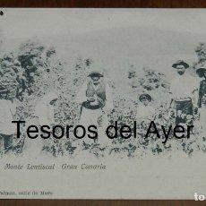 Postales: POSTAL DE GRAN CANARIA, BENDIMIANDO, MONTE LENTISCAL, ED. MARIA QUESADA, LAS PALMAS, NO CIRCULADA, S. Lote 173362647