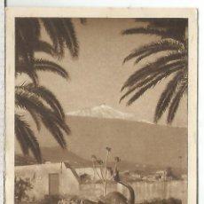 Cartoline: TENERIFE EL TEIDE SIN ESCRIBIR. Lote 173491198
