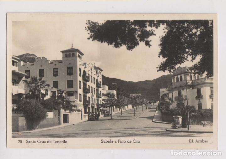 POSTAL. 75. SANTA CRUZ DE TENERIFE. SUBIDA A PINO DE ORO. CANRIAS (Postales - España - Canarias Moderna (desde 1940))