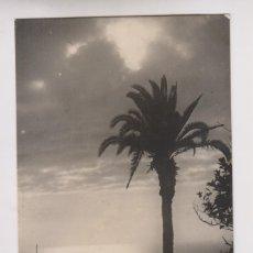 Postales: POSTAL. EL ROQUE DE GARACHICO. TENERIFE. CANARIAS. Lote 173877744