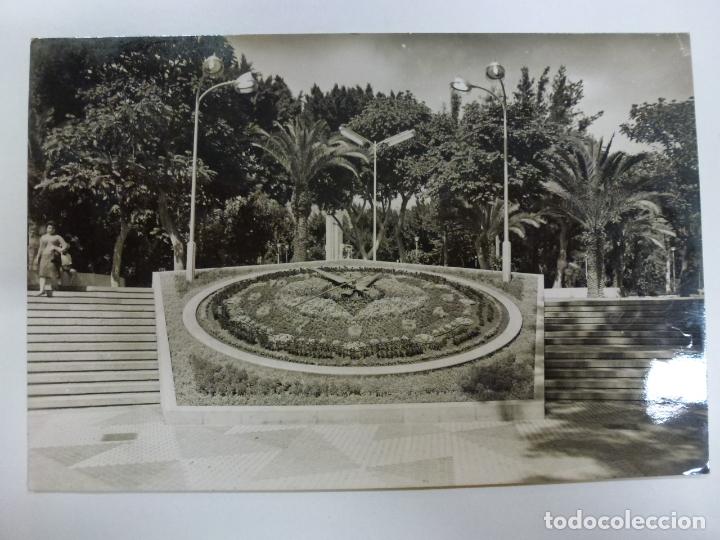 POSTAL. 1142. SANTA CRUZ DE TENERIFE. PARQUE MUNICIPAL. RELOJ DE FLORES. ED. ARRIBAS. CIRCULADA 1960 (Postales - España - Canarias Moderna (desde 1940))