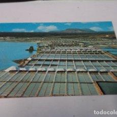 Postales: LANZAROTE - POSTAL JANUBIO - SALINAS. Lote 176349599