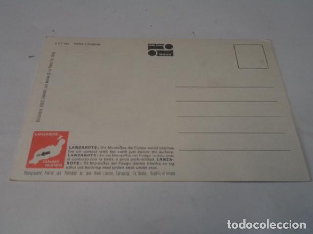 Postales: LANZAROTE - POSTAL MONTAÑA DEL FUEGO - Foto 2 - 176349824