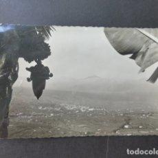 Postales: LA OROTAVA TENERIFE VISTA. Lote 178362553