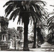 Postales: POSTAL DE LA LAGUNA - TENERIFFE - PASEO DE LAS PALMERAS. Lote 180017238