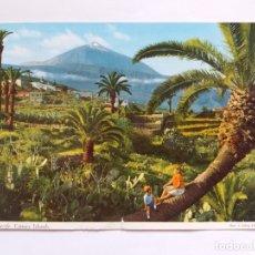 Postales: TARJETA POSTAL - TENERIFE CANARY ISLANDS . Lote 180106606
