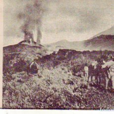 Cartoline: TENERIFE VOLCAN CHINYERO EL TEIDE. Lote 180291522