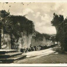 Postales: TENERIFE -LA PAZ-FOTOGRÁFICA OTTO AUER- AÑO 1915. Lote 182485271