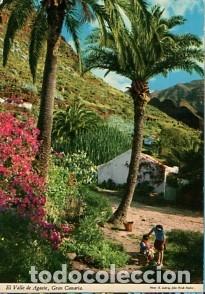 GRAN CANARIA - PAISAJE DEL VALLE DE AGAETE - SIN CIRCULAR (Postales - España - Canarias Moderna (desde 1940))