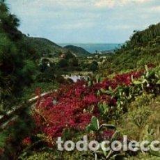 Postales: GRAN CANARIA - Nº 6100 LAS PALMAS VALLE DE AGAETE - AÑO 1973 - SIN CIRCULAR. Lote 183077071