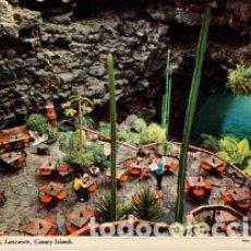 Postales: CANARIAS - LANZAROTE - JAMEOS DEL AGUA - SIN CIRCULAR. Lote 183078071