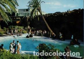 CANARIAS - LANZAROTE - PISCINA DE LOS JAMEOS DEL AGUA - AÑO 1971 - SIN CIRCULAR (Postales - España - Canarias Moderna (desde 1940))