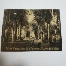 Postales: POSTAL ORIGINAL. 6.5 X 4.6CM. DÉCADA 30. Nº 1397. LAS PALMAS. ALAMEDA COLON. Lote 184038305